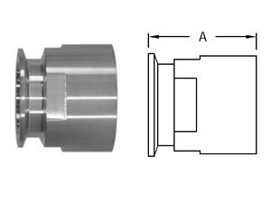 # SAN22MP-G10050 - Clamp x Female NPT Adapters - 304 Stainless Steel - Tube OD: 1 in. - Thread Size: 1/2 in.