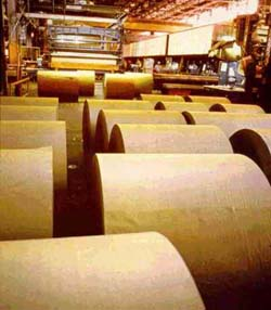 paper pulp industrial hoses