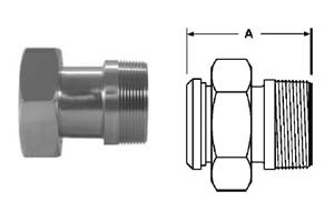 # SAN14-19-G150 - Plain Bevel Seat x Male NPT Adapters - 304 Stainless Steel - 1-1/2 in.